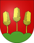 Dorfverein Salvenach